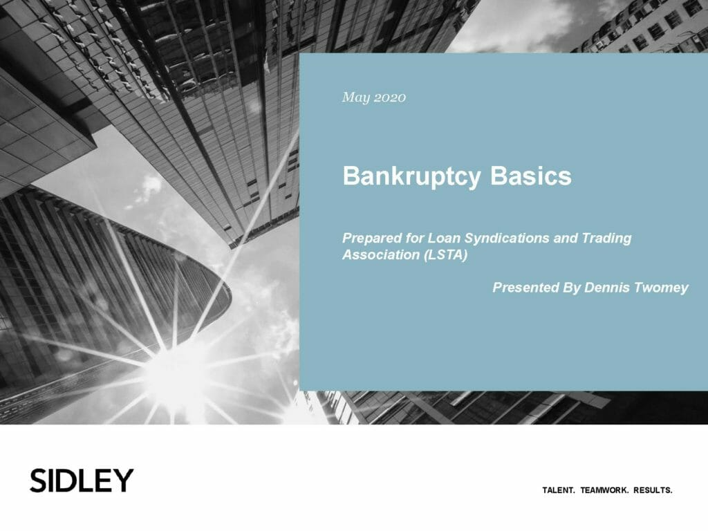 Pages from Bankruptcy Basics (May 14, 2020)